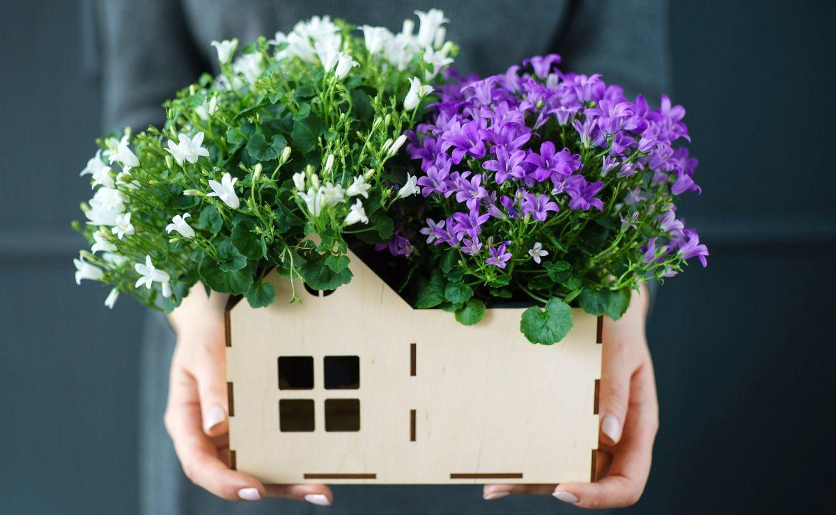 Как можно отозвать согласие супруга на дарение квартиры